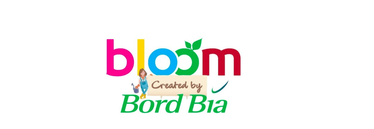 Bloom Expo